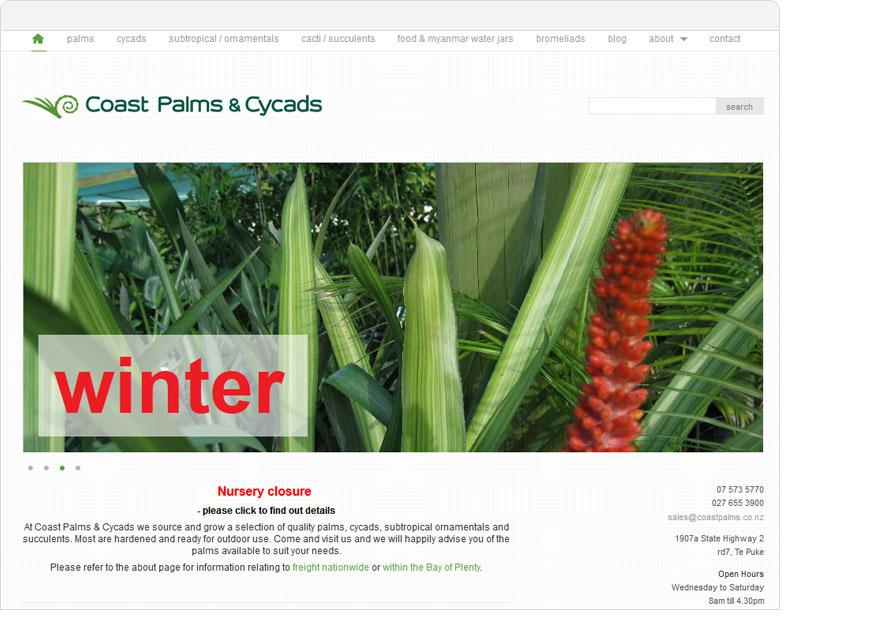 wordpress web design for coast palms