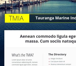 website design concept for TMIA