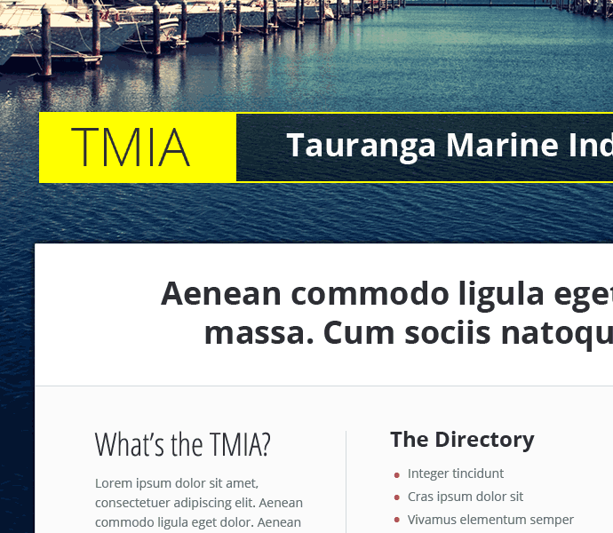 website design concept for TMIA