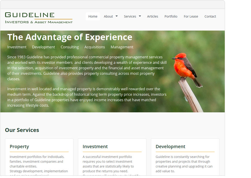 screenshot guideline wordpress website