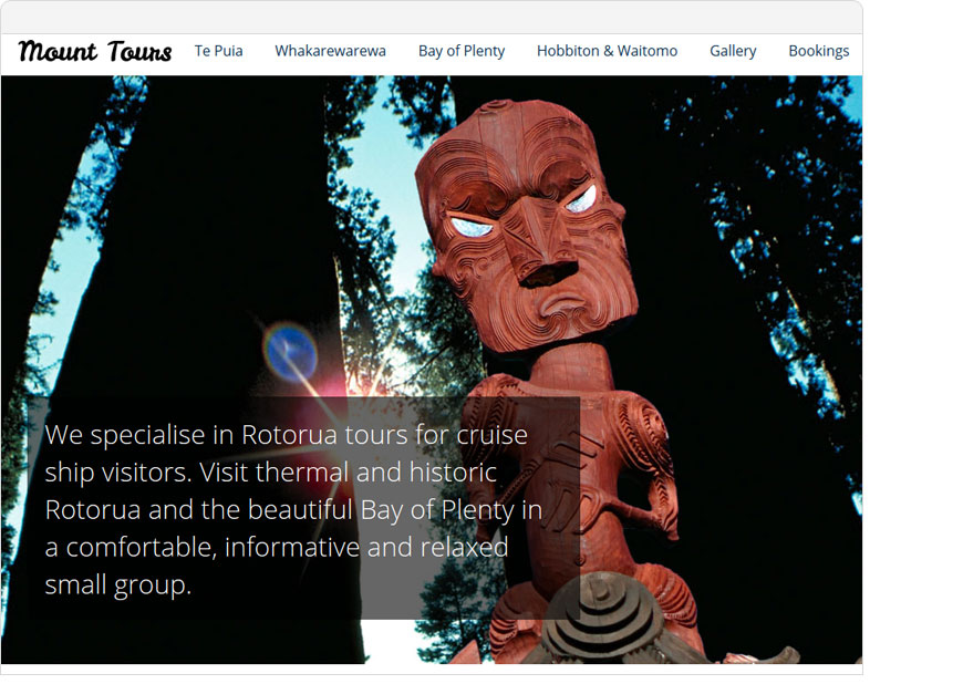 screenshot mount tours one page website