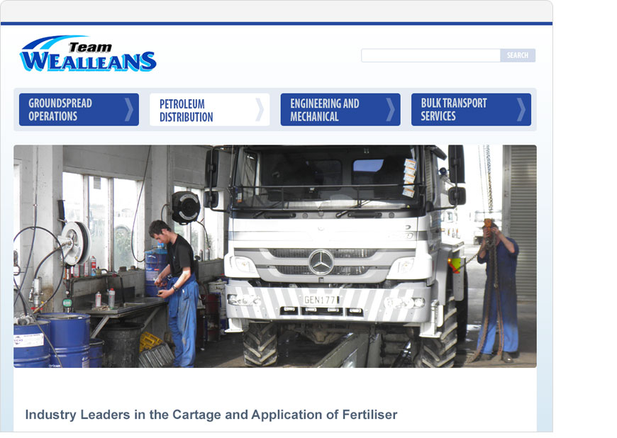 screenshot wealleans website