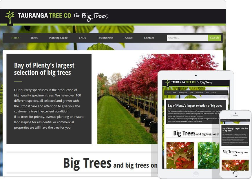 up and running the website for Tauranga Tree Co