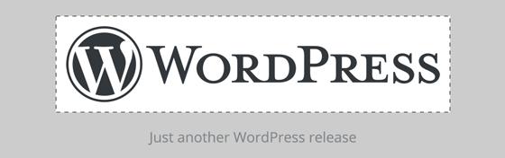 custom logos - WordPress 4.5