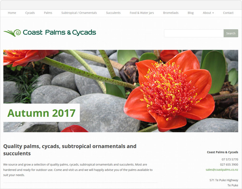website for coast palms