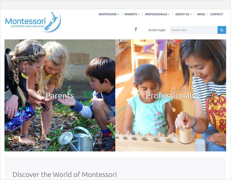 website screen shot MANZ